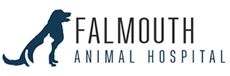 Falmouth Animal Hospital